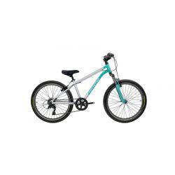Rider 24 mint 2019
