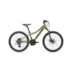 """Подростковый велосипед Giant XtC Jr Disc 24 (2020) Темно-зеленый 24"""""""